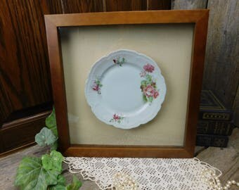 Antique Rose China Plate in a Wood Shadow Box