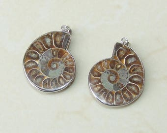 Matching Pair - Ammonite Pendant - Fossil Pendant - Nautilus - Shell Pendant with Silver Plated Brass Bezel and Bail. 30mm x 35mm - 4423