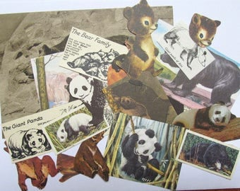 Bear paper ephemera kit: pack of 25 hand cut bear images from vintage books. Craft pack for scrapbooks, art journal, card making. EP610