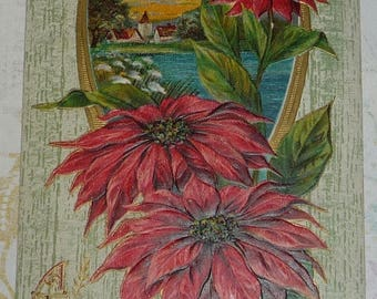 ON SALE Poinsettias on Scenic Background  Antique Christmas Postcard