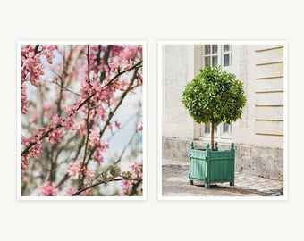 """Versailles, France Travel Photography, """"Branch and Topiary"""", Set of 2 Fine Art Prints, Gallery Wall, Home Decor, Gift"""