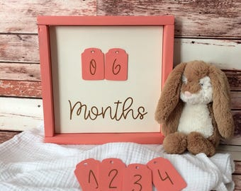 First Year Monthly Baby Photo Sign, Cream/Coral/Copper