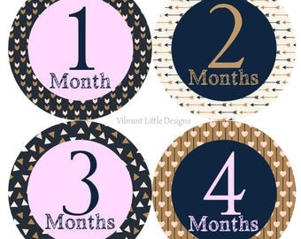 Milestone Stickers, Baby Monthly Stickers Girl, Month Stickers, Baby Month Stickers, Baby Stickers #148