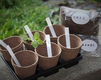 Aromatherapy Herb Garden Starter Kit