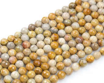 NATURAL Medium fossil coral, High Quality in Faceted round, 6mm, 8mm, 10mm- Full 15.5 Inch Strand- Wholesale Pricing