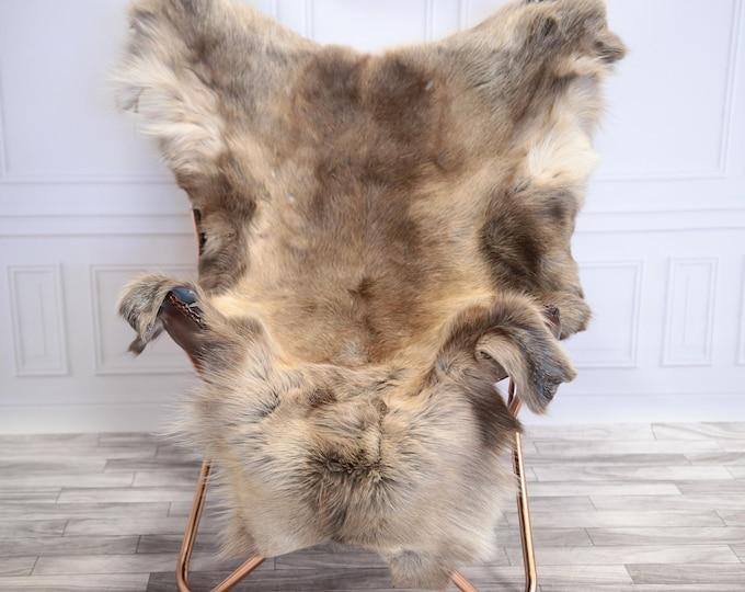 Reindeer Hide | Reindeer Rug | Reindeer Skin | Throw L  Large - Scandinavian Style #20RE14
