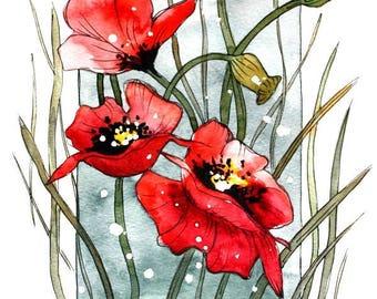 Flower Watercolor Painting - Floral Art Print - Watercolor Flower Watercolor Painting Flower Painting Floral Art, Poppies