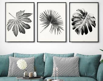 Set of 3 Prints – Large Wall Art Print -  Botanical Prints - Set of Three Prints –  Botanical Art – Black and White Print– Fine Art Prints