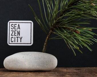 Coastal Christmas Tree - Holey Beach Stone and Pine Tree Branch - Natural Rustic Wabi-Sabi Decor