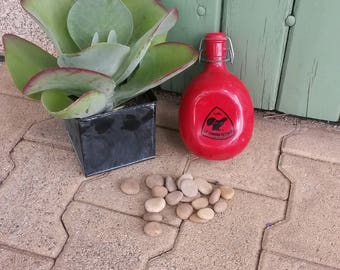 Water Flask, red flask, Le Grand Tetras, old water bottle, camping water canteen