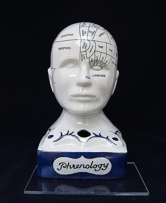 "Phrenology Head Inkwell 12.5""-Phrenology Bust-Phrenology Skull-Phrenology Statue-Pseudoscience-Medical Statue-Skull-Porcelain statue"
