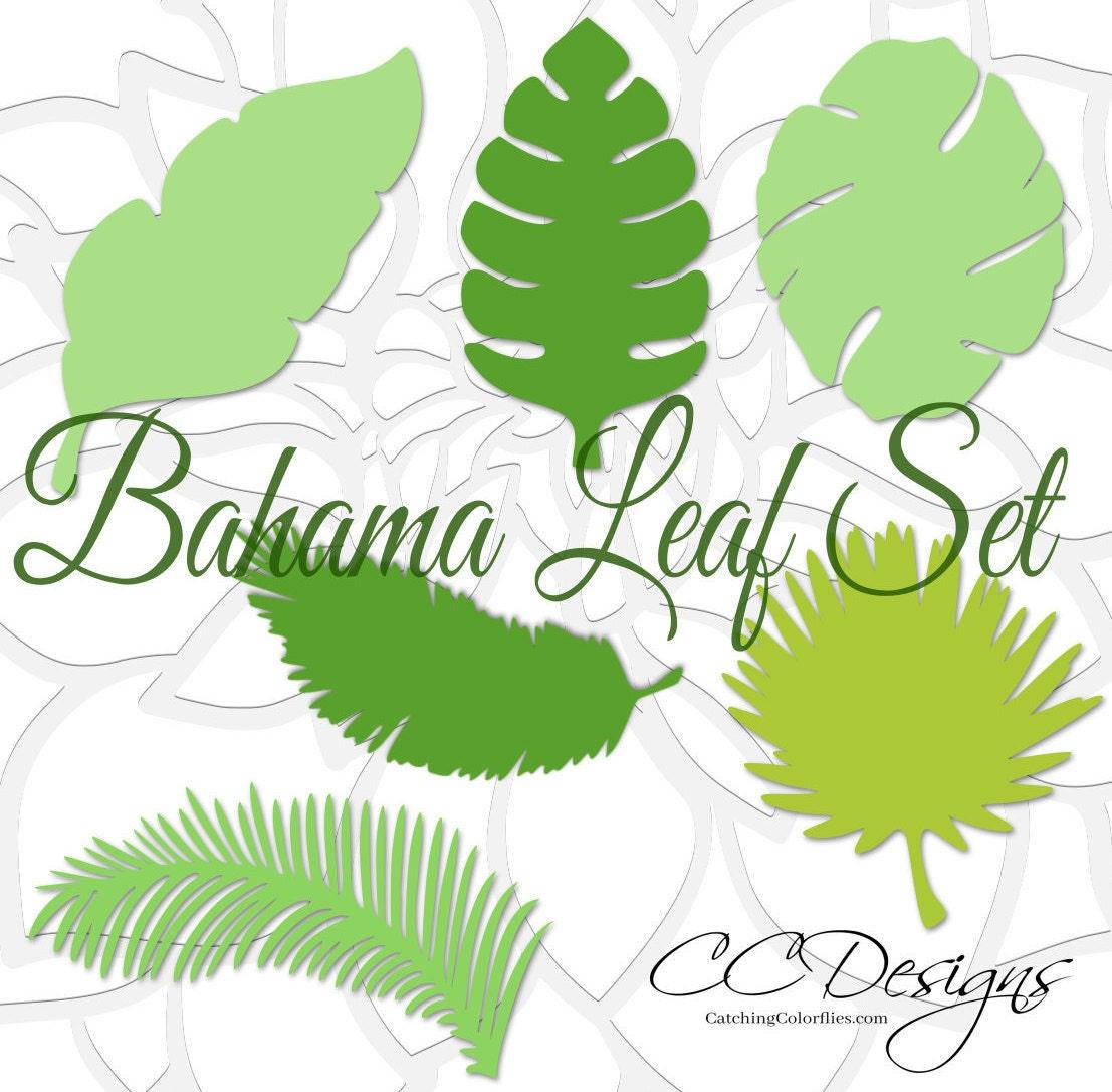 large paper leaf templates  tropical leaf svg cut files