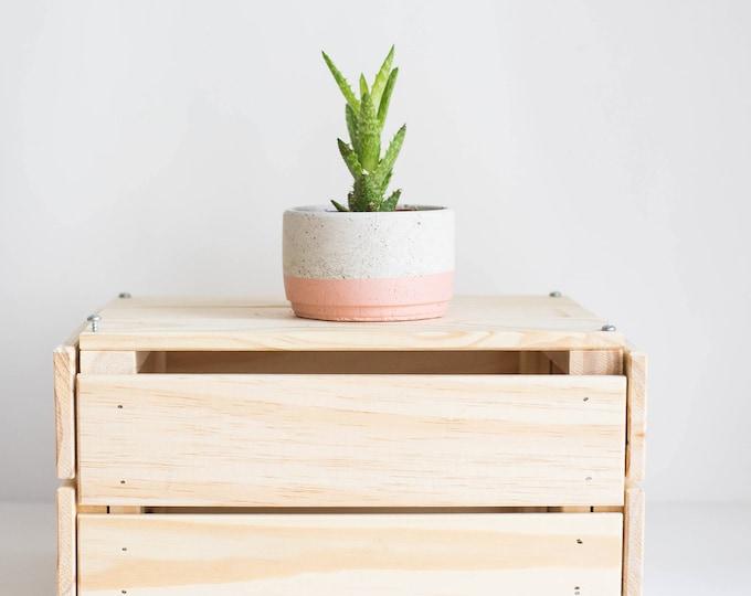 Medium Concrete Planter: Pink