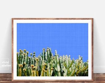 Cactus Photography, Succulent Print, Cactus Art, Cactus Print, Cacti, Cactus Plant Print, Cactus Wall Art, Cactus Printable, Cactus Photo