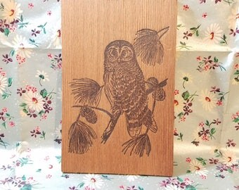 Wood Owl Postcard, California Redwood Burned Art, Mail Post card, Vintage Collectible