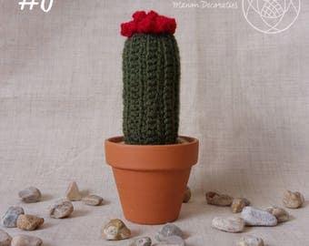 Cactus #6 (crochet)