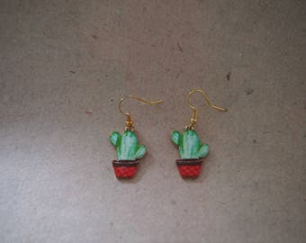 Earrings cactus, houseplant