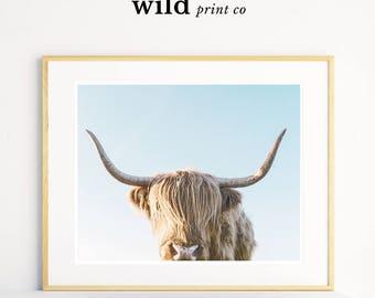 Highland Cow Print Download, Farm Animal Wall Art, Highlander Cow Prints, Horn Print, Printable Animal Art, Farm Nursery, Scandi Wall Art