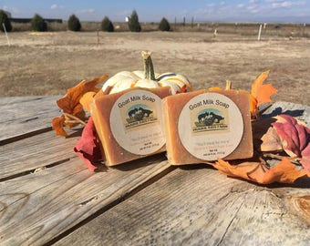 Pumpkin & Brown Sugar Goat Milk Soap