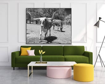 Longhorn Steer Photograph, Texas Cows, Black White Photo, Farmhouse Modern Wall Art, Cows, Photography, Country Cabin, Southwest Decor