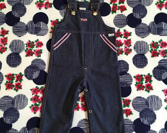 Vintage Baby Kids Girls Jean Jumper Bib Overalls Pink Ric Rac Flower Patch Darling Embroidered Snap Crotch Pete's Jeans
