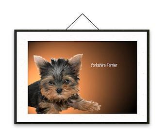 Yorkshire Terrier - Dog breed poster, wall sticker, nursery decor, dog print, nursery print, shabby print   Tropparoba - 100% made in Italy