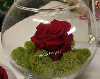 Vases ball and eternal rose Valentine's Day
