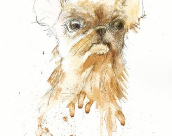 Chihuahua. Mi amor #4