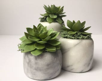 Set of 3 Succulents in Marble (artificail)