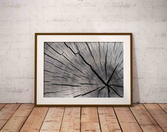 scandinavian print , black and white , tree art print , tree wall art , printable poster , black and white art ,