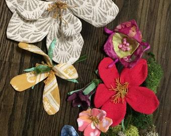 Botany flower models