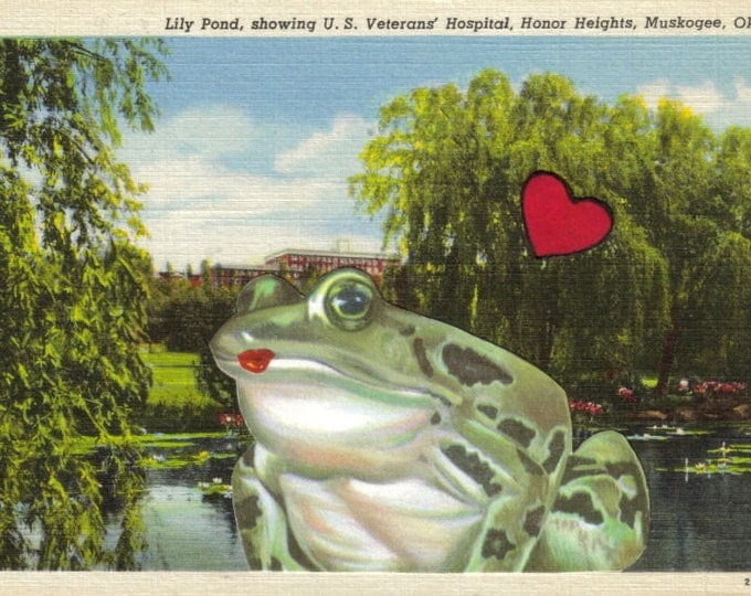 Funny Frog Art Collage, Postcard Artwork