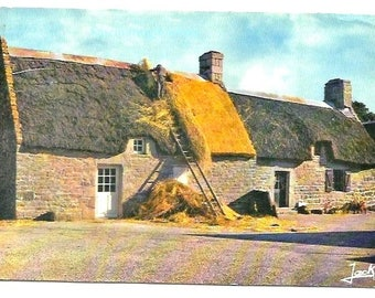 1977 - REPAIR WORK on TATCH roof - Vintage french Photo colorful Postcard, - old and new part of the roof - Brittany colors - french written