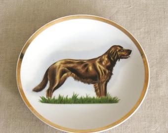 Vintage Decorative Ceramic Plate, Dog, Large Breed, Chocolate Lab, Labrador, Wall Decor, Gold Trim, Japan, Porcelain, Collectible Plates