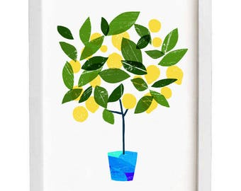 "Art for kitchen Meyer Lemon Tree Citrus Poster print /white/  20""x27"" - archival fine art giclée print"