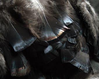 "x100+ Turkey Feathers - 3-5"", Iridescent Black, Domestic Heritage Turkey - meleagris galopavo HTF002HD"