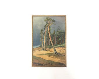Antique Eucalyptus Forest Painting / Original Oil Painting