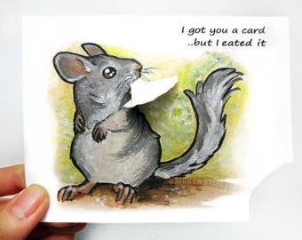 Cute Chinchilla Card, Funny Card, Blank Greeting Card, Customized Message, Animal Lover, Pet Art, Very Hungry, Happy Birthday, Friendship