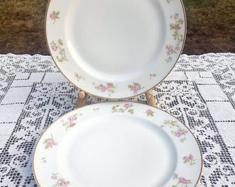"2 Haviland Limoges France White With Rose Border Dinner Plates Gold Trim 9 and 4/8""  Imported by Geo.V Millar & Co. Scranton Pa  VG Cond"