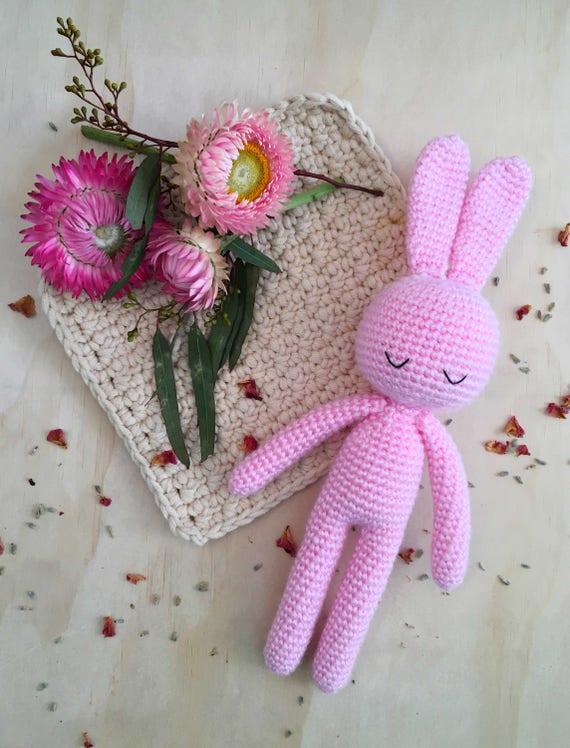 Pink Bunny Buddy