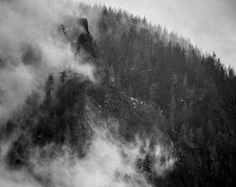 Landscape Photography, Nature Photography, Columbia River Gorge, Black & White, Trees, Fog Photo, Fine Art, Wall Decor, Oregon, Forest Print