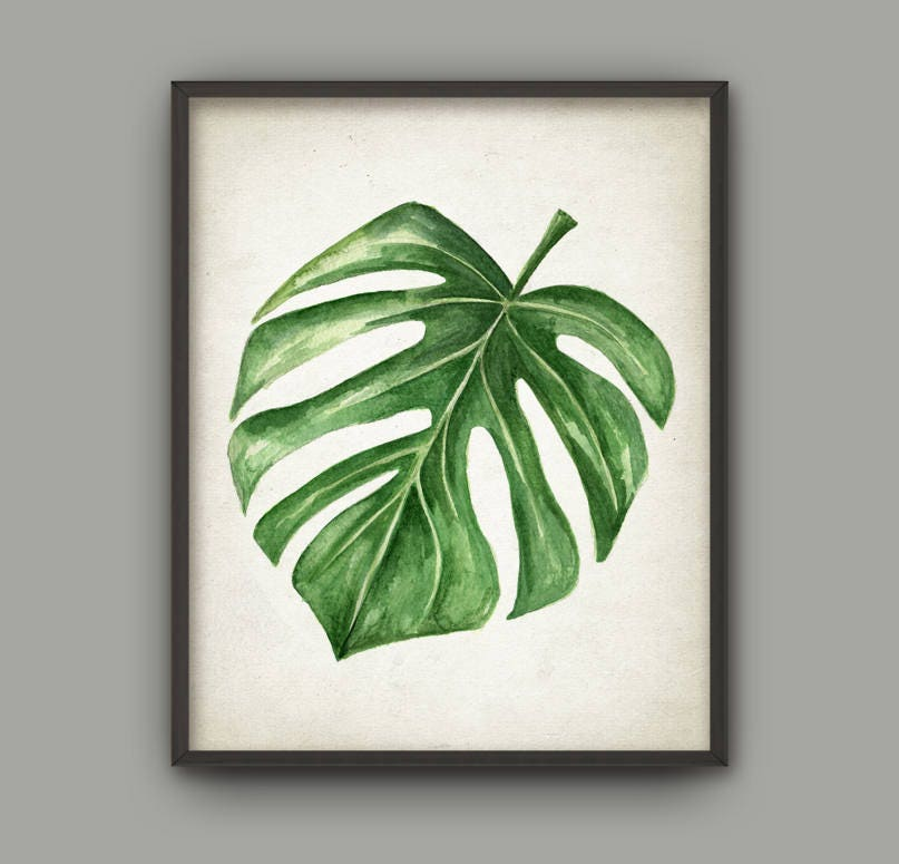 Watercolor Green Plants Monstera Nature Posters And Prints: Tropical Leaf Watercolor Art Print Monstera Swiss Cheese