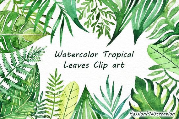 Watercolor Tropical Leaves Clip Art Handpainted Clipart Png