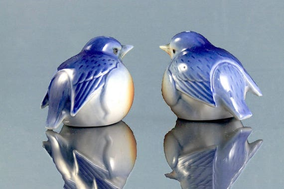 Bluebird Salt and Pepper Shakers, Bone China, Hand Painted, Country Decor, Farmhouse Decor, Collectible