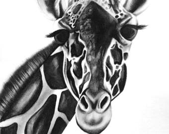 Giraffe Pencil Print