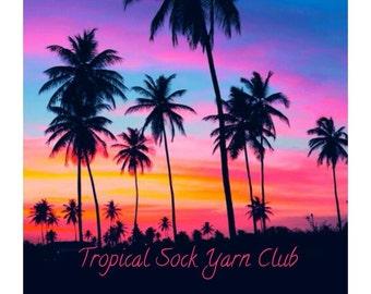 Tropical: One month sock yarn club by Star Fiber Studio