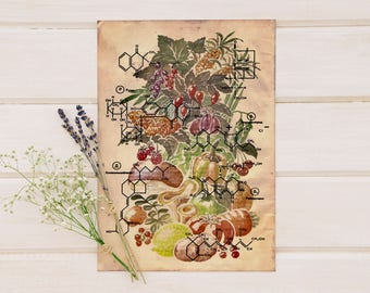 Fruits, Vegetables, Herbs & Their Chemical Structure - Printable Art - Instant Download