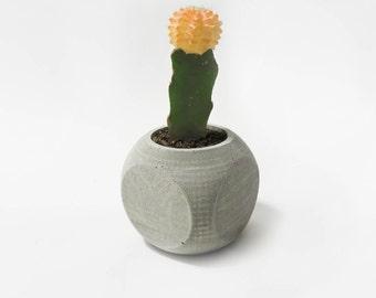 Concrete Planter - Rounded Cube