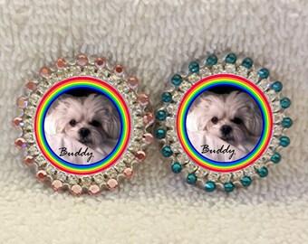 Rainbow Bridge Photo Pin, Swarovski Rhinestones Personalized Pet Memorial Pin, Custom Pet Portrait Jewelry