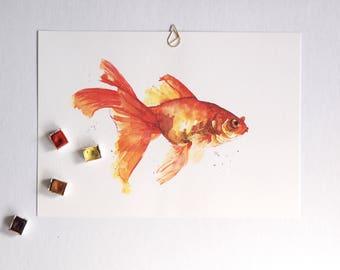 Vis: goudvis